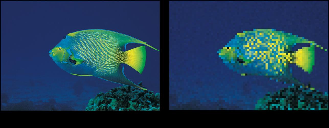 """Canvas mit dem Effekt des Filters """"Pixelierung"""""""