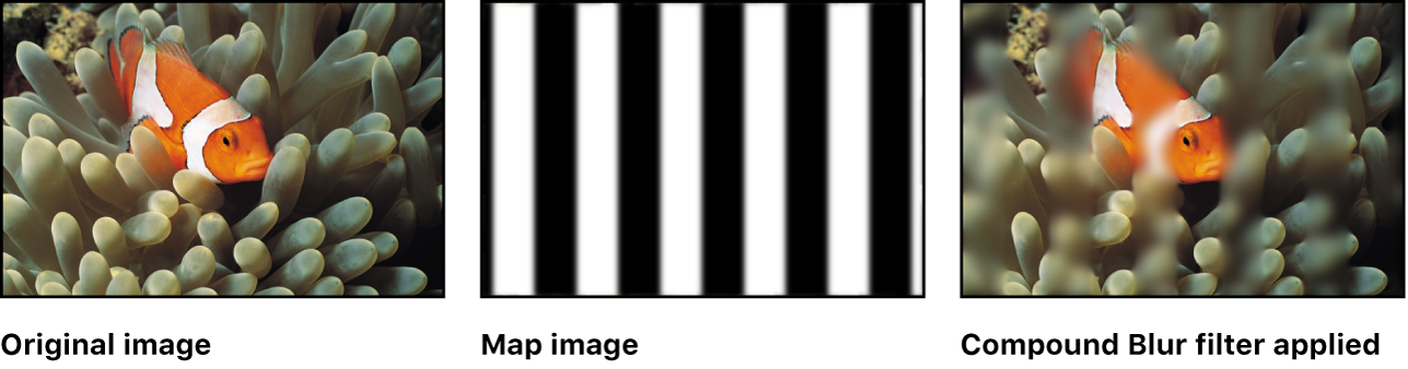 Canvas showing effect of Compound Blur filter