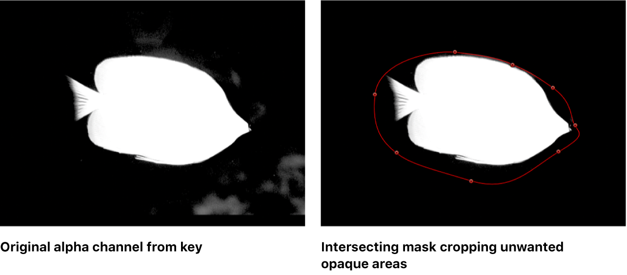 Canvas showing two intersecting masks