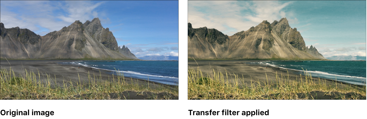 Canvas showing effect of Transfer filter
