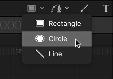 Circle tool in the canvas toolbar