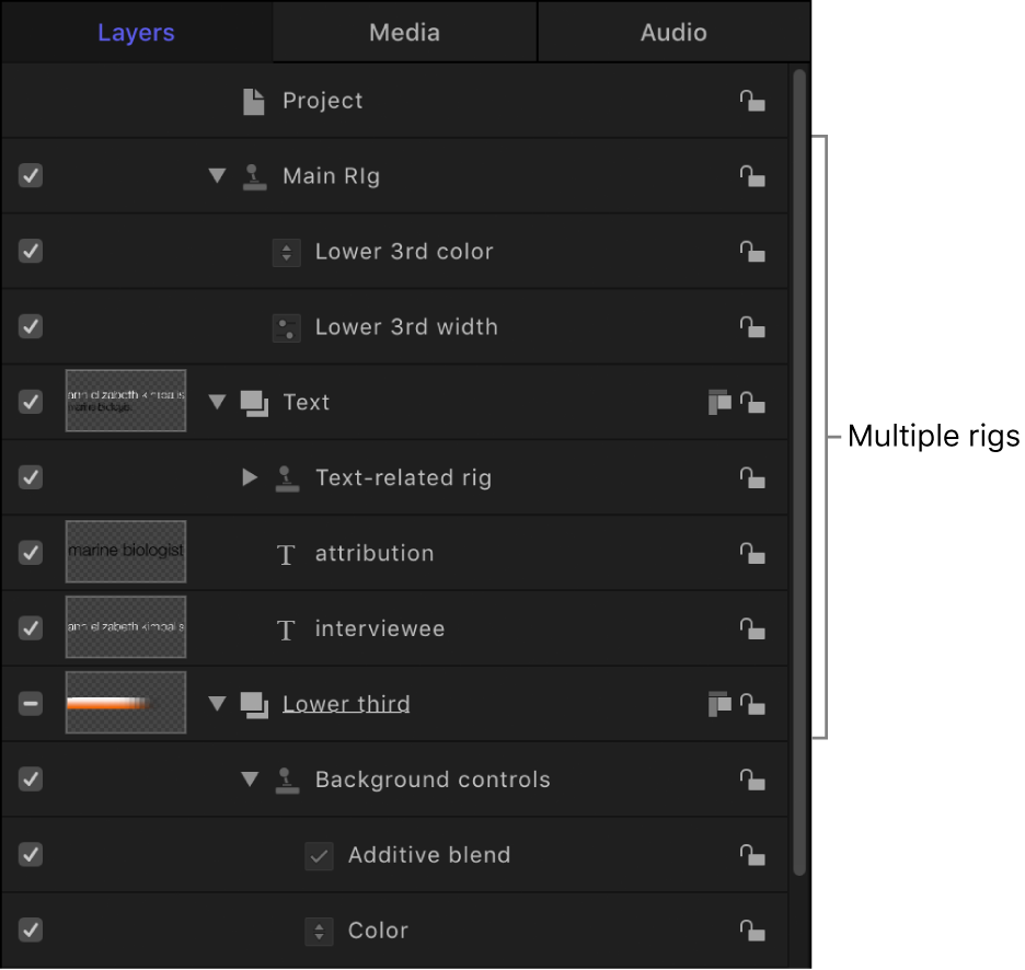 Layers list showing multiple rigs