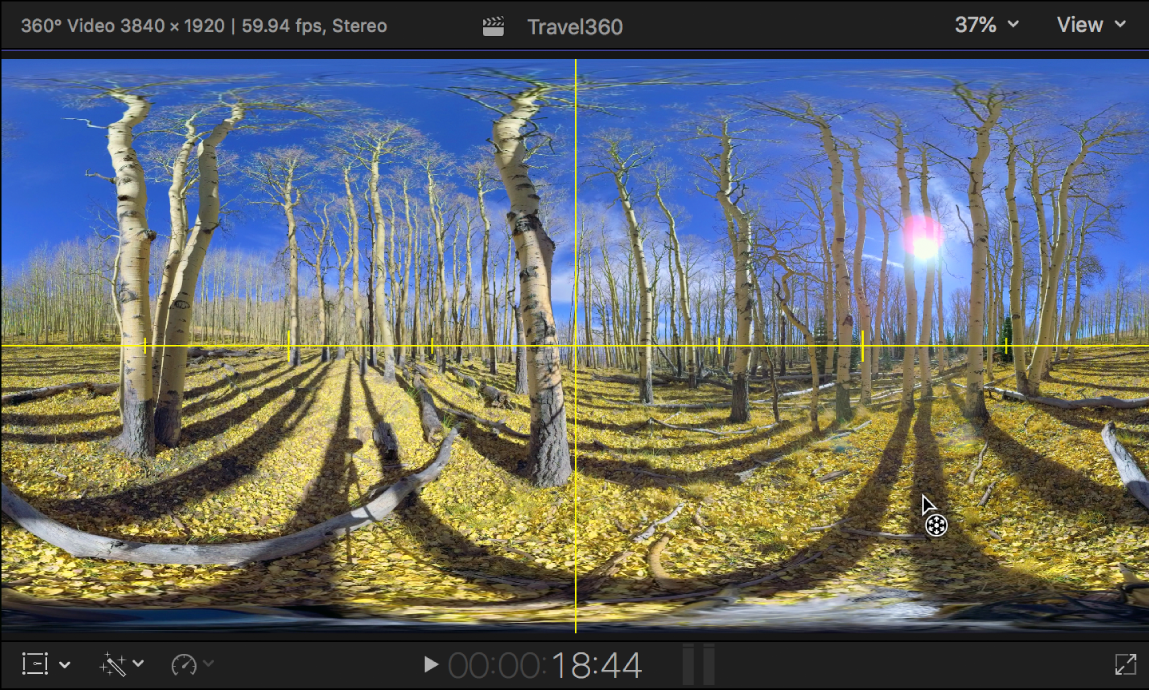 The viewer showing yellow Horizon guidelines over a 360° video clip