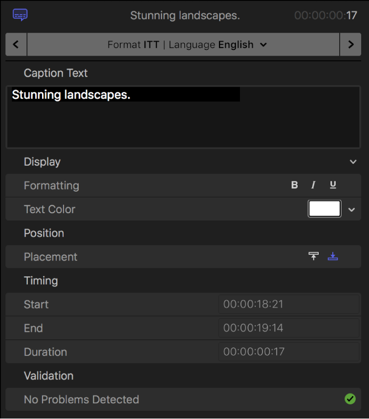 The Caption inspector showing caption text formatting controls for the iTT format