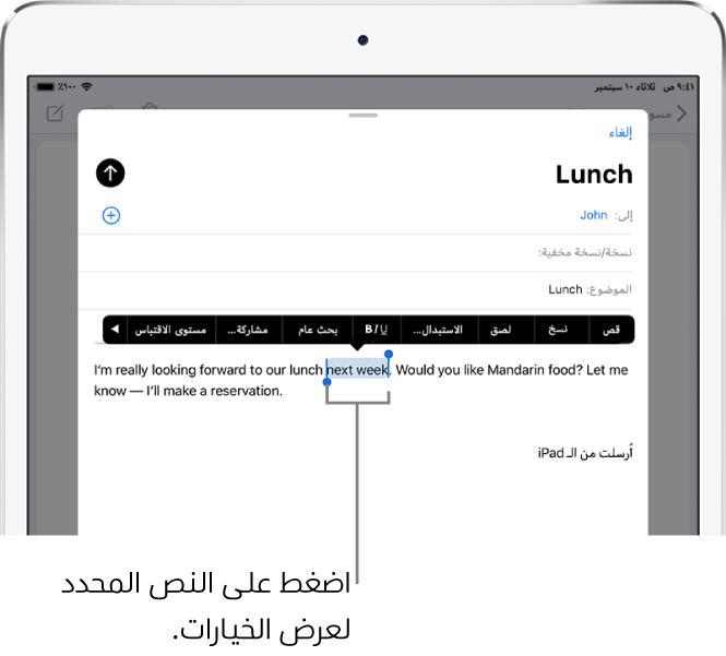 نموذج رسالة بريد إلكتروني محدد بها بعض النص. أعلى التحديد تظهر أزرار قص ونسخ ولصق واستبدال. النص المحدد مميز.