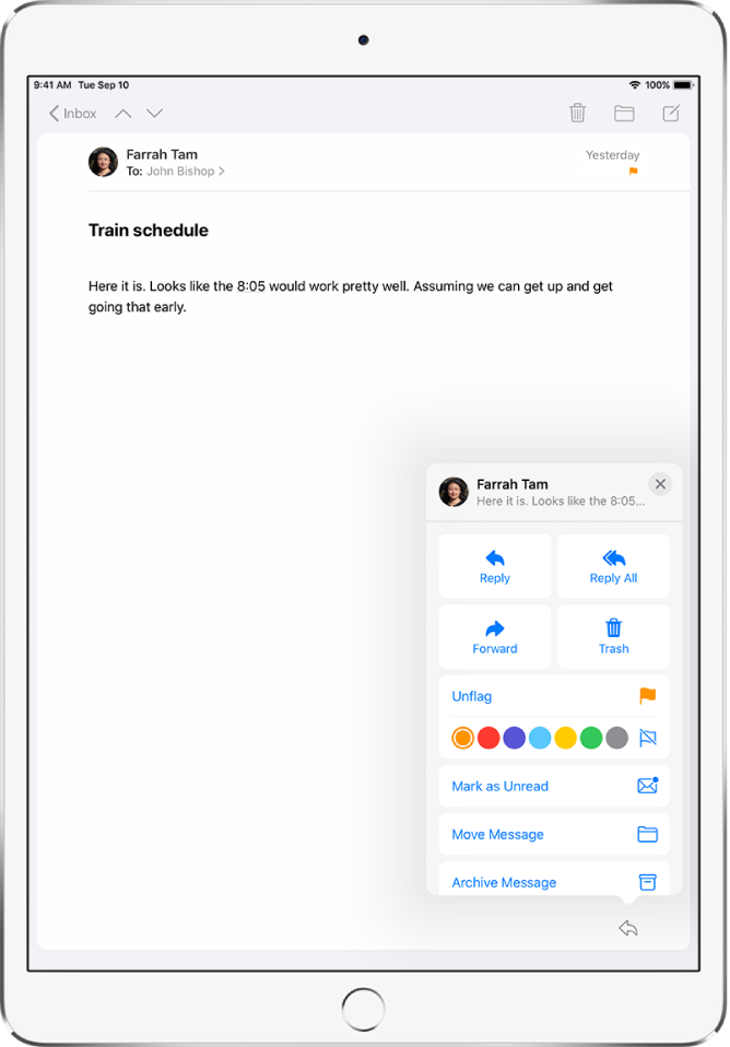 Flag and filter emails on iPad - Apple Support
