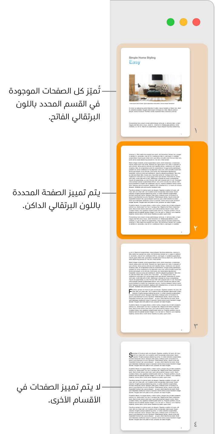 """الشريط الجانبي """"عرض الصور المصغرة"""" وبه الصفحة المحددة مميزة باللون البرتقالي الداكن وجميع الصفحات في القسم المحدد مميزة باللون البرتقالي الفاتح."""
