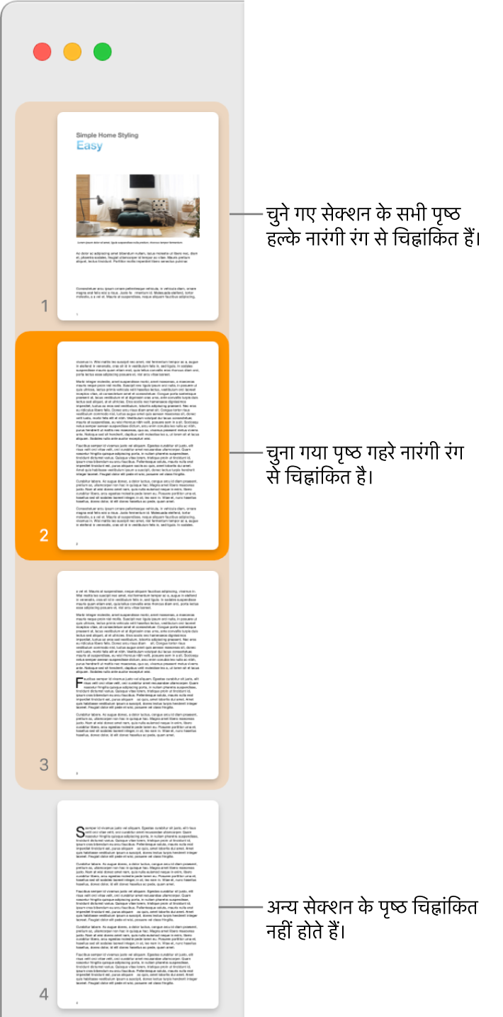 गहरे नारंगी रंग से चिह्नांकित चुना गया पृष्ठ और हल्के नारंगी रंग से चिह्नांकित चुने गए सेक्शन के सभी पृष्ठों के साथ थंबनेल दृश्य साइडबार।