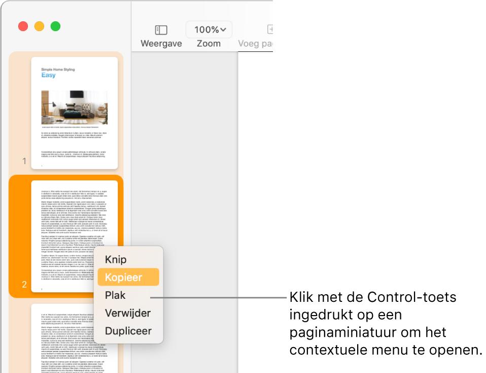 De paginaminiatuurweergave waarin een miniatuur is geselecteerd en het contextuele menu is geopend.