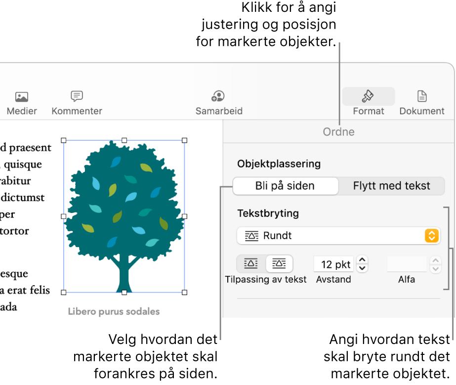 Format-menyen med Ordne-sidepanelet synlig. Objektplassering-innstillingene er øverst i Ordne-sidepanelet med Tekstbryting-innstillingene under.