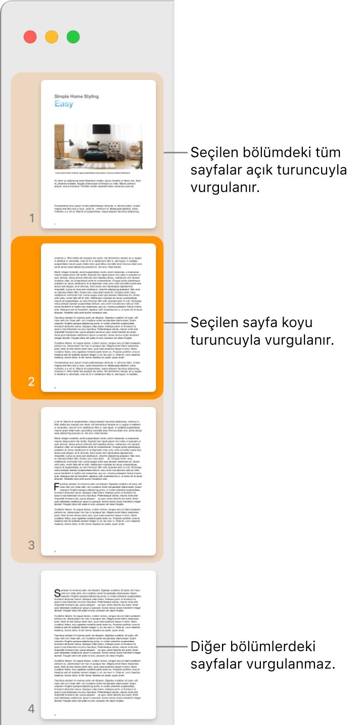 Seçilen sayfa koyu turuncuyla ve seçilen bölümdeki tüm sayfalar açık turuncuyla vurgulanmış olan Küçük Resim Görüntüsü kenar çubuğu.
