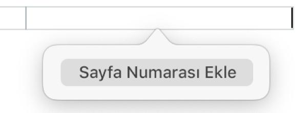 Üst bilginin alt tarafında Sayfa Numarası Ekle düğmesi.