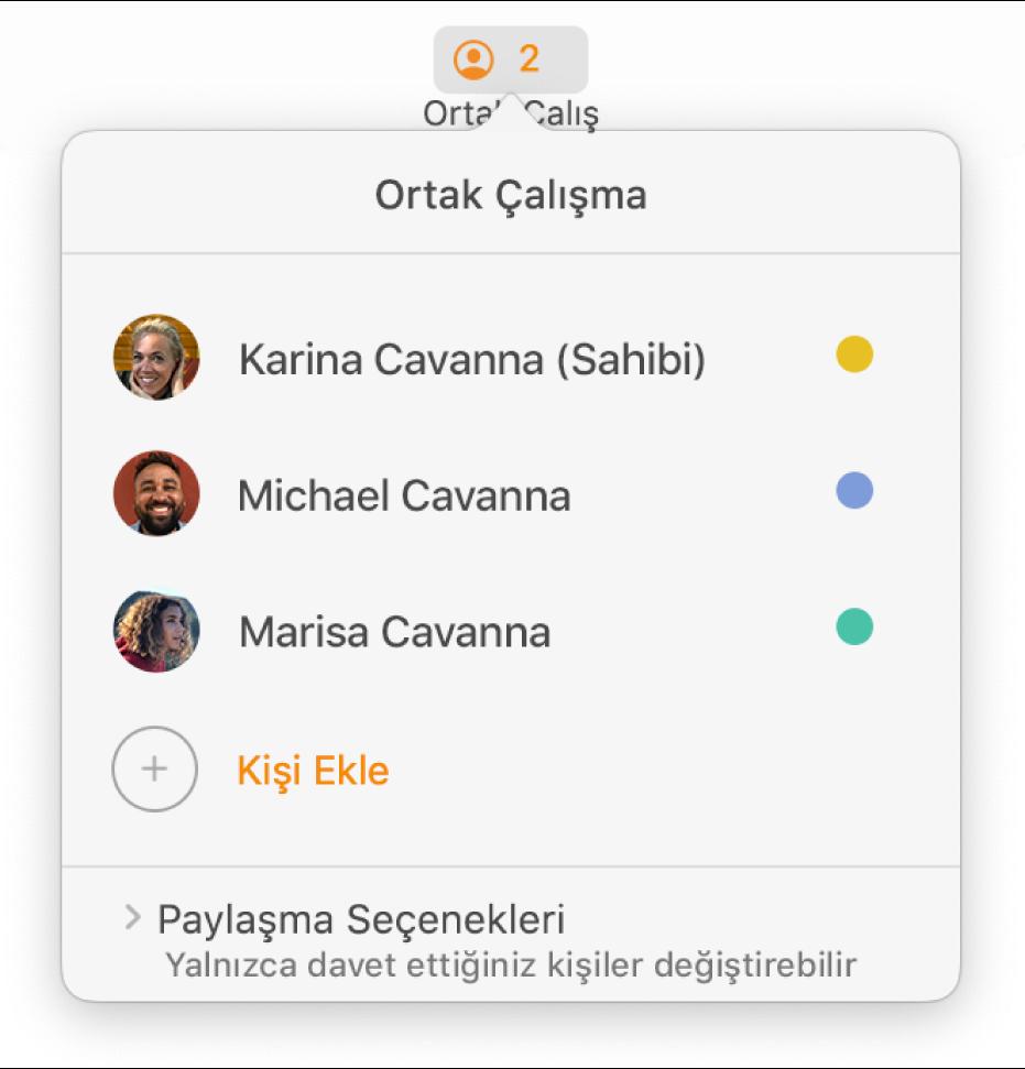 Belgede ortak çalışan kişilerin adlarını gösteren Ortak Çalışma menüsü. Paylaşma seçenekleri adların altındadır.