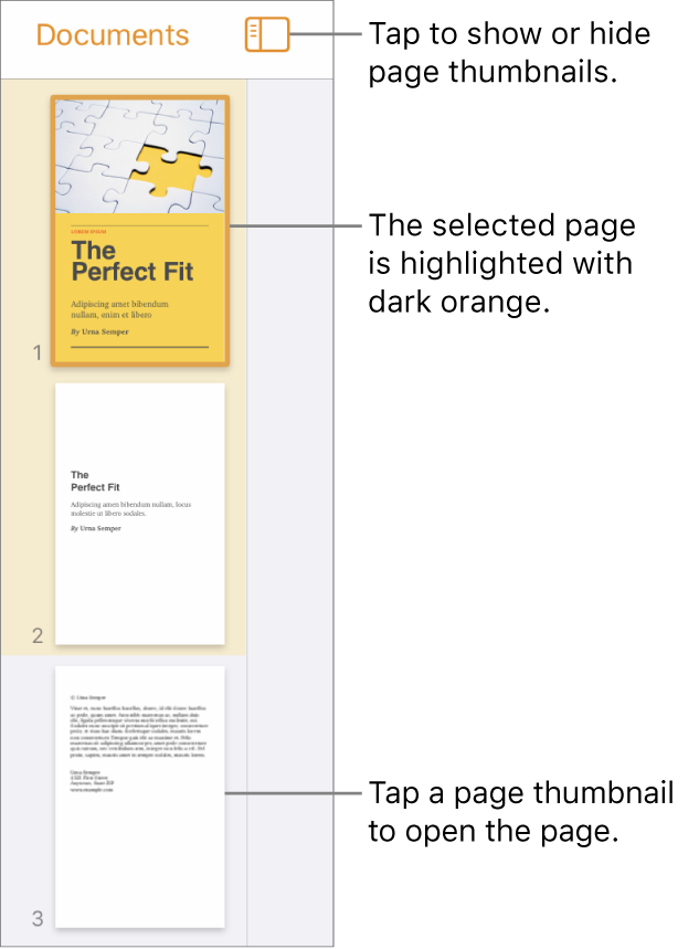Page Thumbnails view on the left side of the screen with one page selected. The View Options button is above the thumbnails.