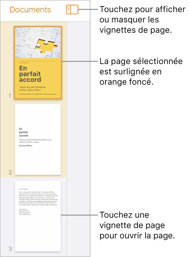 Présentation en vignettes de page du côté gauche de l'écran avec une page sélectionnée. Le bouton Options de présentation est au-dessus des vignettes.