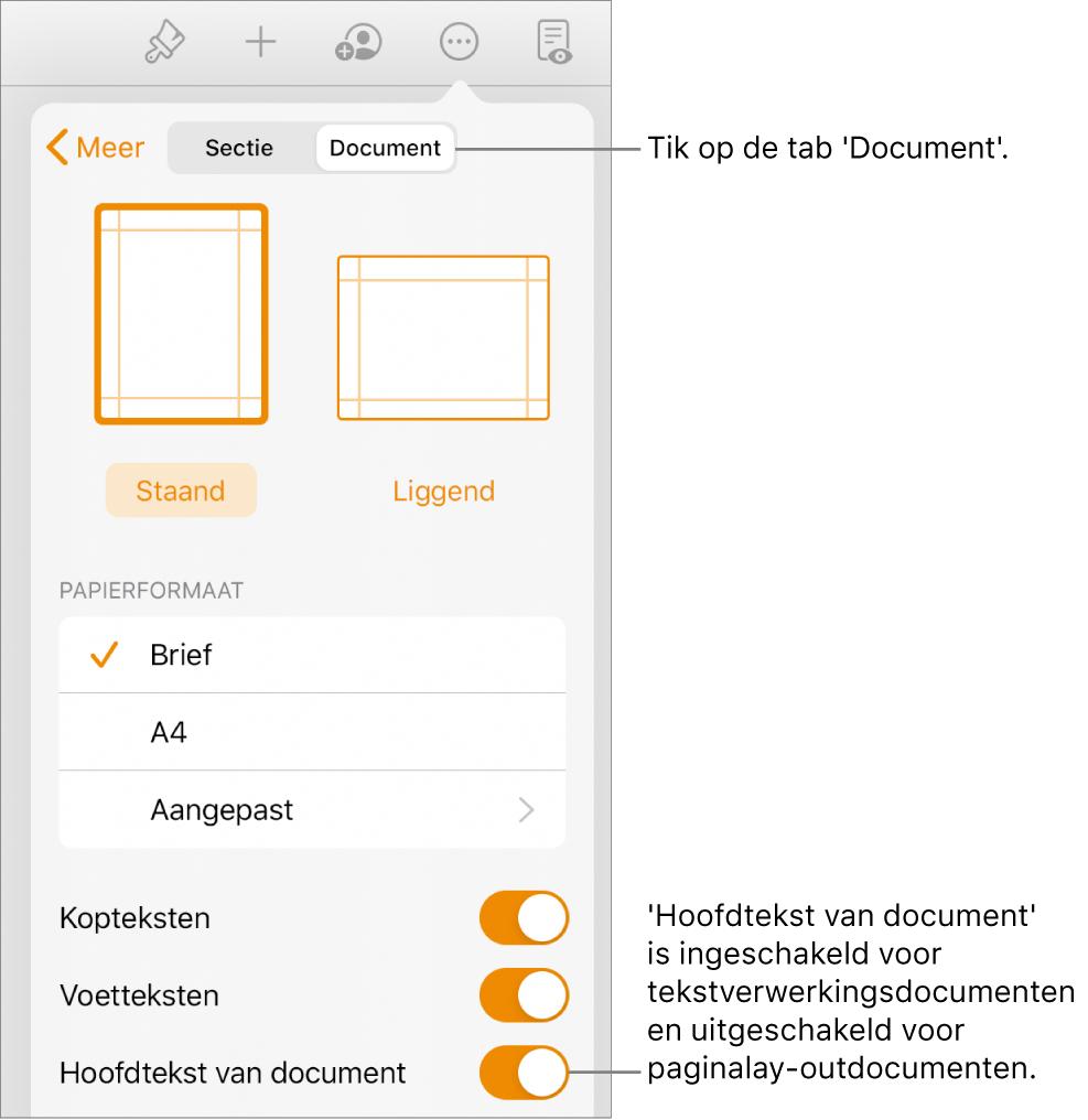 De opmaakregelaars in het tabblad 'Document'. 'Hoofdtekst van document' staat onder in het scherm en is ingeschakeld.