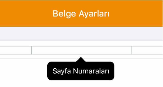 Ortada ekleme noktası ile üç başlık alanı ve Sayfa Numaları'nı gösteren açılır menü.