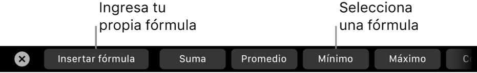 La Touch Bar de la MacBook Pro con controles para insertar tu propia fórmula y para seleccionar una fórmula utilizada comúnmente.