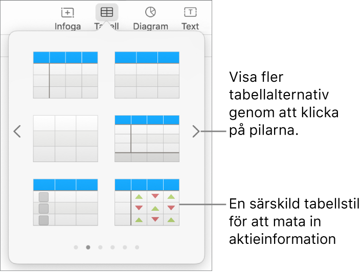 Tabellmenyn som visar miniatyrer för tabellstilar med en särskild stil för att mata in aktieinformation i nedre högra hörnet. Längst ned visas sex punkter vilket betyder att du kan visa fler stilar genom att svepa.