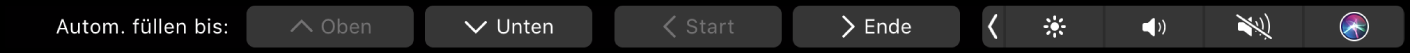 """Die Numbers-TouchBar mit angezeigter Taste für das automatische Ausfüllen Dazu gehören die Tasten """"Oben"""", """"Unten"""", """"Start"""" und """"Ende""""."""