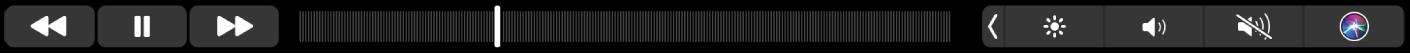 Die Musik-TouchBar mit Tasten zum Zurückspulen, Anhalten oder schnellen Vorspulen des aktuell wiedergegebenen Titels. Es gibt auch eine Navigationsleiste, um innerhalb eines Titels zu navigieren.