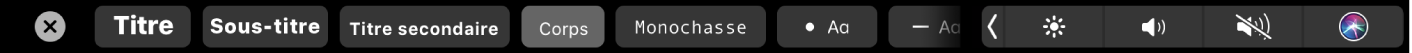 TouchBar de Notes avec des boutons correspondant aux styles de paragraphe, notamment Titre, Sous-section et Corps, ainsi que des boutons correspondant aux options de liste, comme une puce, un tiret et un numéro.