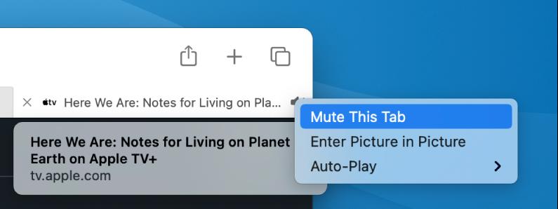 Podizbornik za ikonu Audio, sa stavkama Isključi zvuk ove kartice, Otvori sliku u slici i Auto reprodukcija.