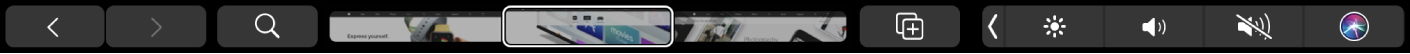 Safari TouchBar sa strelicama za pomicanje unatrag i unaprijed, tipkom za pretraživanje, izbornikom kartica i tipkom za dodavanje knjižne oznake.