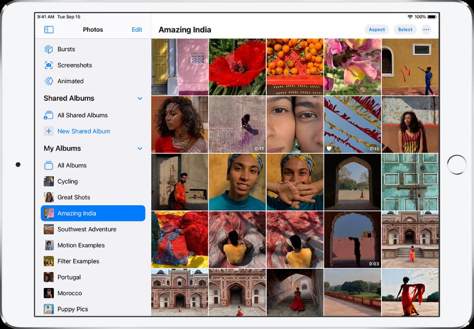 В лявата страна на екрана е отворена страничната лента на Photos (Снимки). Под заглавието My Albums (Моите албуми) е избран албумът с име Amazing India (Невероятната Индия). Останалата част от екрана на iPad е изпълнена със снимки и видео клипове от албума Amazing India (Невероятната Индия), показани като мозайка.