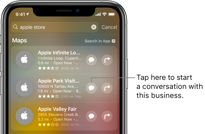 The Search screen showing found items for Maps. Each item shows a brief description, rating, or address, and each website shows a URL. The second item shows a button to tap to start a business chat with the Apple Store.
