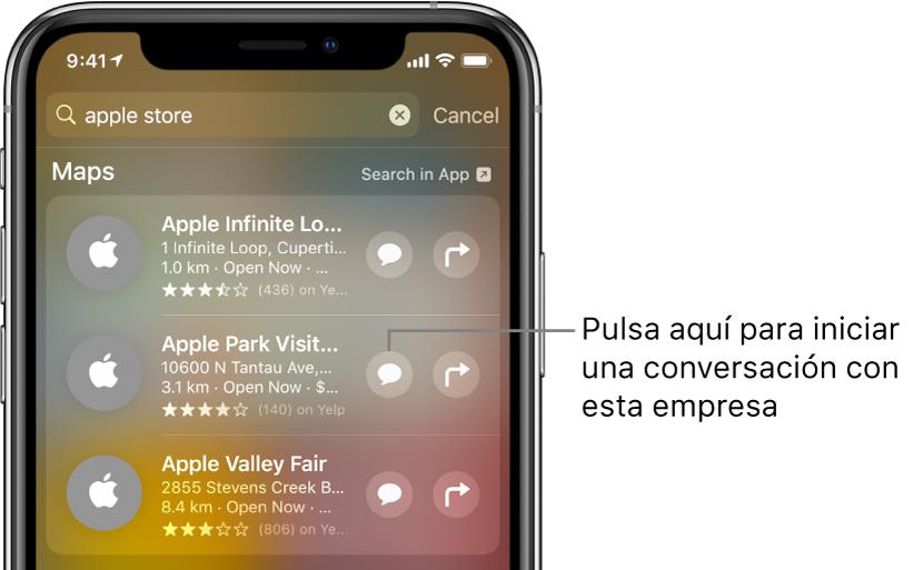 Pantalla Buscar con los ítems encontrados para Mapas. Cada ítem muestra una breve descripción, calificación o dirección, y cada sitio web muestra una dirección URL. El segundo ítem muestra un botón para iniciar un chat para clientes con AppleStore.
