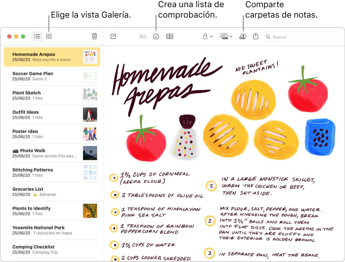 """Ventana de la appNotas en la vista Galería con textos que indican los botones """"Visualización como galería"""", """"Lista de comprobación"""" y """"Compartir carpeta""""."""