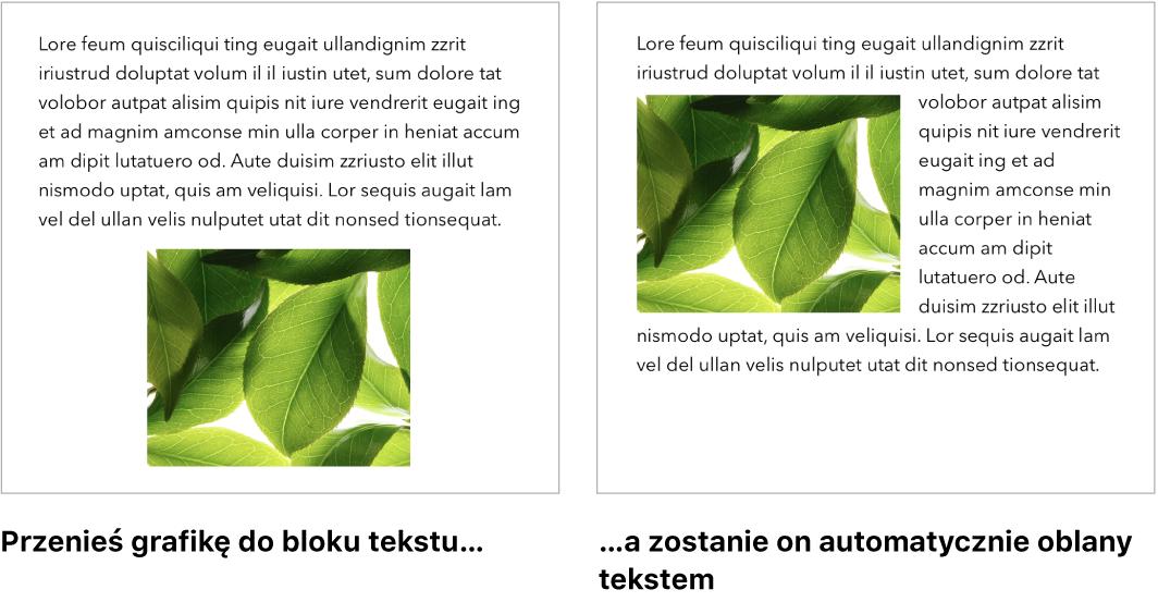 Okno aplikacji Pages przedstawiające sposób oblewania grafik tekstem.