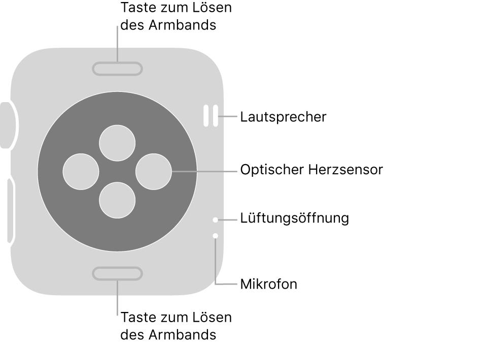 Die Rückseite der Apple Watch Series 3 mit Entriegelungstasten oben und unten, optischem Herzsensor in der Mitte sowie Lautsprecher, Lüfteröffnung und Mikrofon an der Seite.