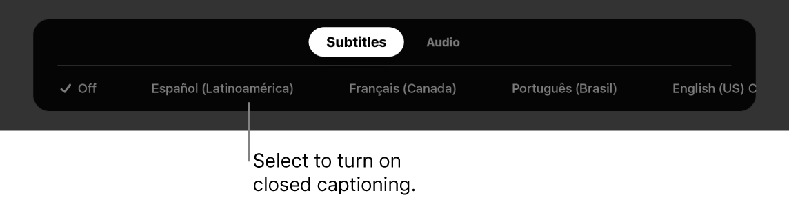 Subtitles menu during playback