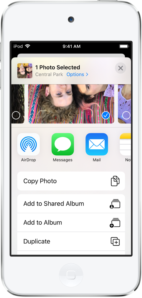 L'écran de partage de Photos. La photo sélectionnée se trouve en haut de l'écran. Les options de partage figurent dessous. Sous les actions de partage se trouve une liste d'actions, à savoir, de haut en bas: «Copier la photo», «Ajouter à un album partagé», «Ajouter à un album» et Dupliquer.