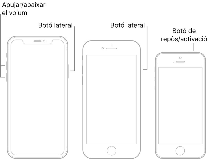 Il·lustracions de tres models d'iPhone diferents, tots amb la pantalla de cara cap amunt. La il·lustració de l'esquera mostra els botons d'apujar i abaixar el volum a l'esquerra del dispositiu. El botó lateral es troba a la dreta. La il·lustració del mig mostra el botó lateral a la dreta del dispositiu. La il·lustració de la dreta mostra el botó de repòs/activació a la part superior del dispositiu.