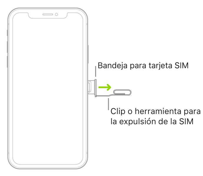 Se inserta un clip de papel o la herramienta para retirar la tarjeta SIM en el pequeño orificio de la bandeja situada en el lateral derecho del iPhone para extraer la bandeja y retirarla.