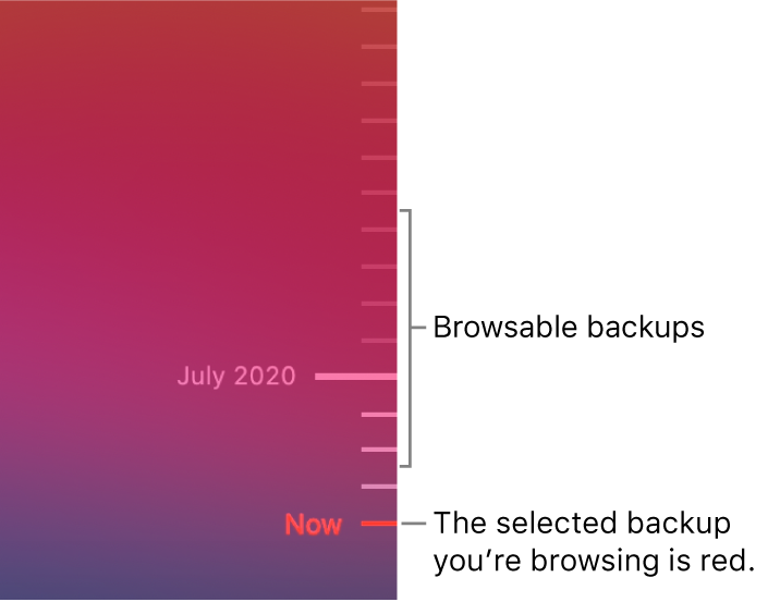 Ticks in the backup timeline. The red tick mark indicates the backup you're browsing.