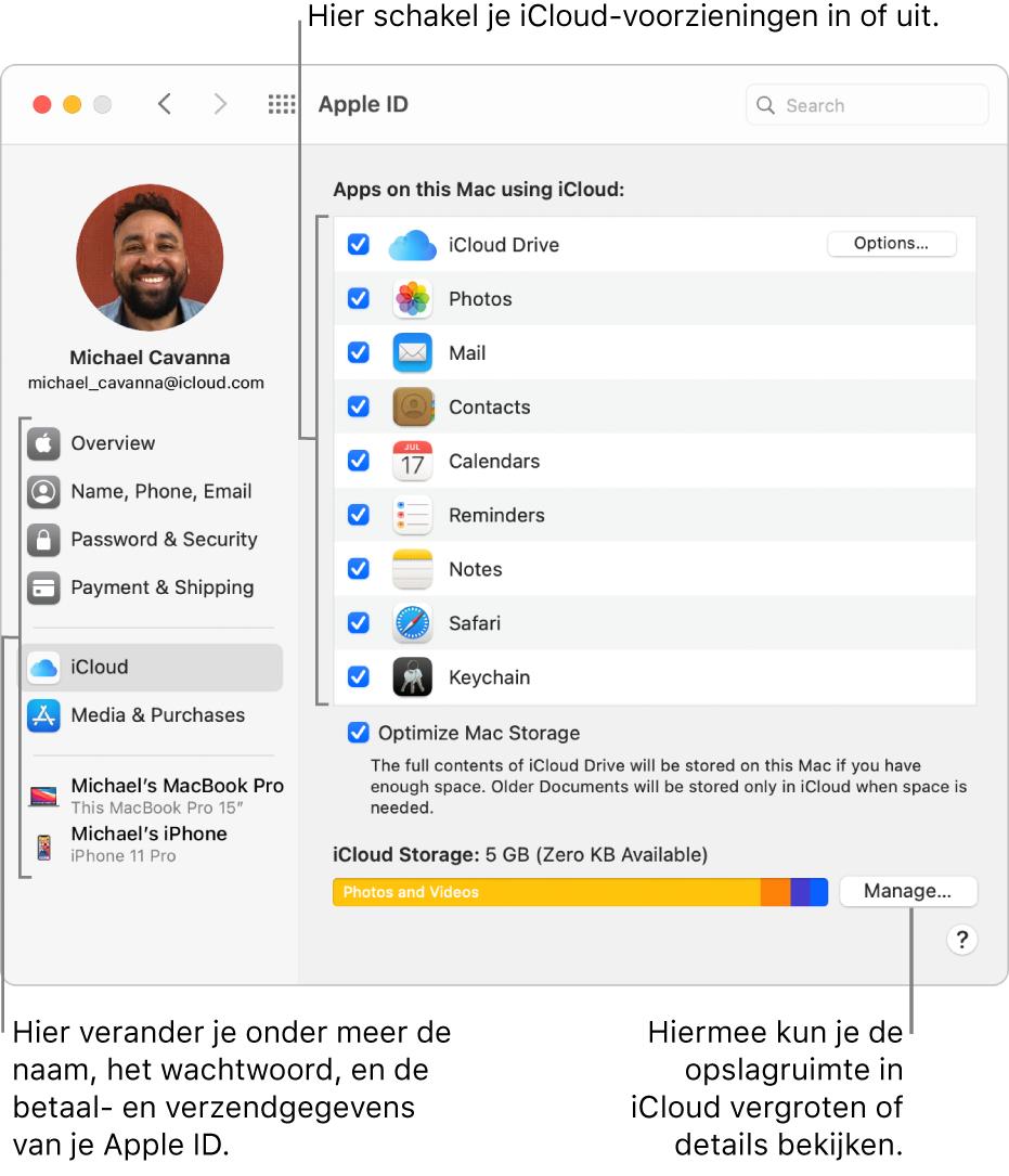 Het paneel 'iCloud' in Systeemvoorkeuren waarin alle voorzieningen zijn geselecteerd.