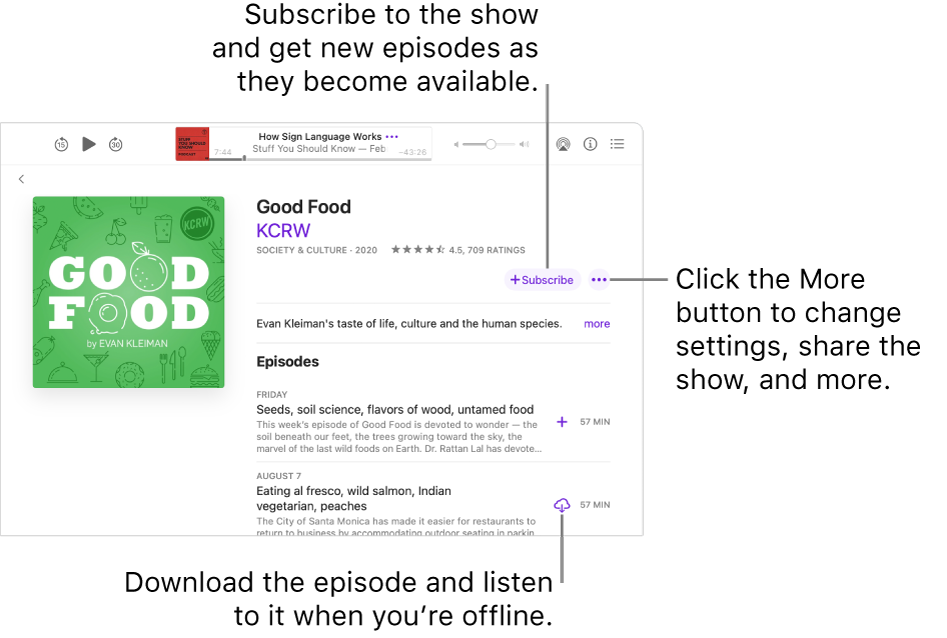 The show detail screen. Click Subscribe to get new episodes as they become available. Click the More button to change settings, share the show, and more. Download the episode if you want to listen to it when you're not connected to the internet.
