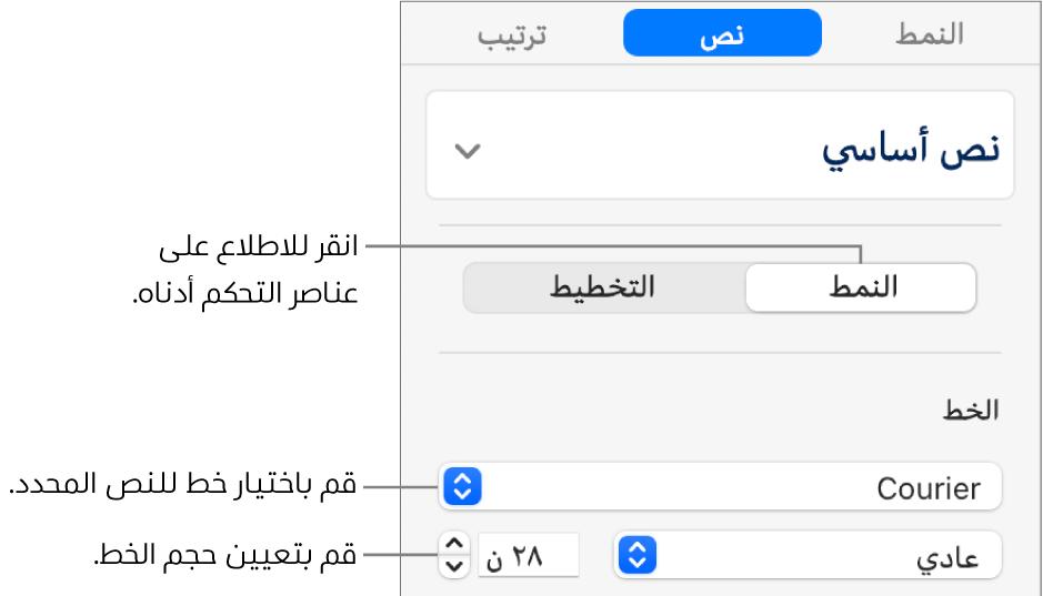 عناصر التحكم في النص في قسم النمط من الشريط الجانبي لإعداد الخط وحجم الخط.