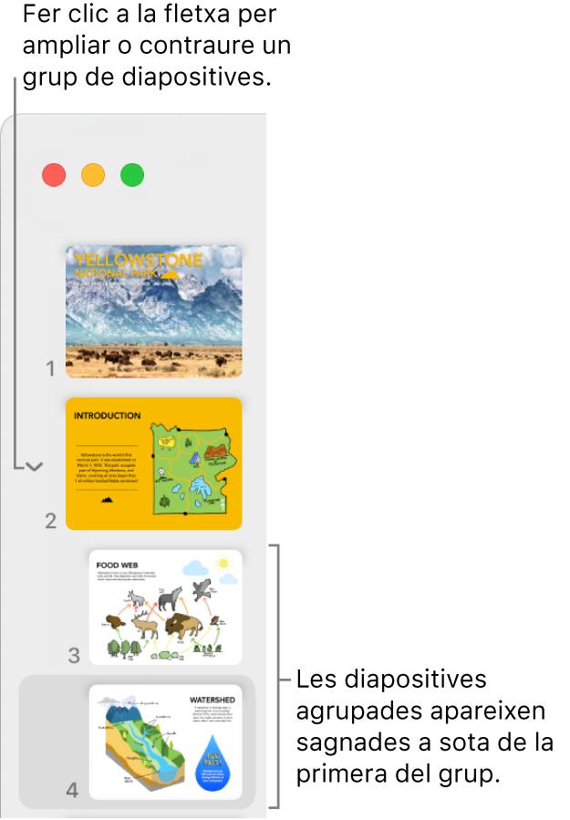 El navegador de diapositives amb diapositives sagnades.