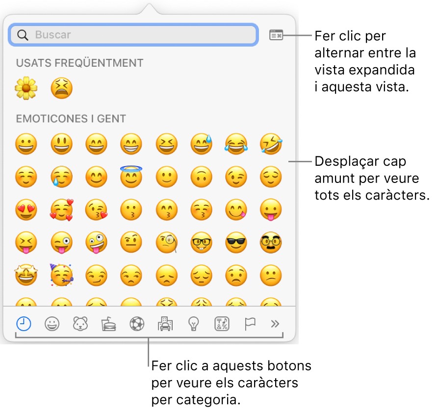 """La finestra emergent """"Caràcters especials"""", amb emoticones, botons per a diversos tipus de símbols a la part inferior i una llegenda d'un botó per mostrar la finestra """"Caràcters especials"""" completa."""
