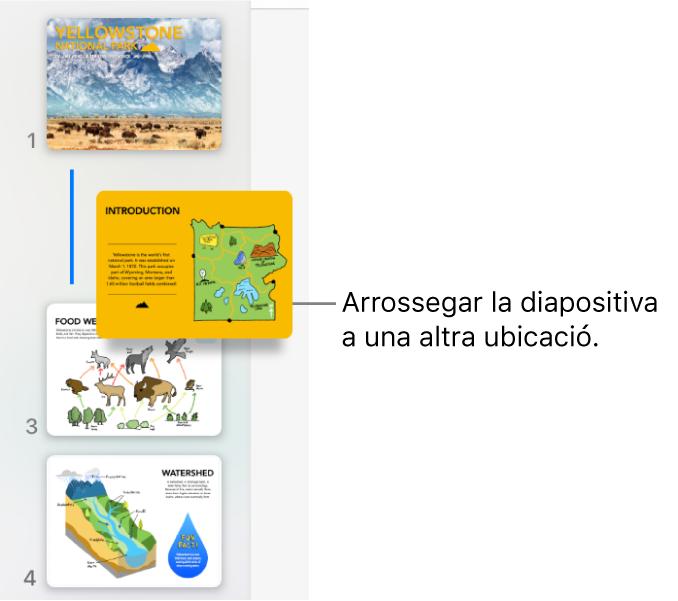 El navegador de diapositives on es mostra una miniatura de diapositives reordenada amb una línia a l'esquerra.