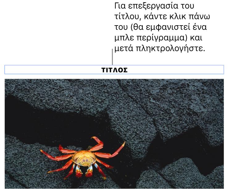 Ο τίτλος δεσμευτικού θέσης, «Τίτλος», εμφανίζεται κάτω από μια φωτογραφία. Μια μπλε περιγράμμιση γύρω από το πεδίο του τίτλου δείχνει ότι είναι επιλεγμένος.
