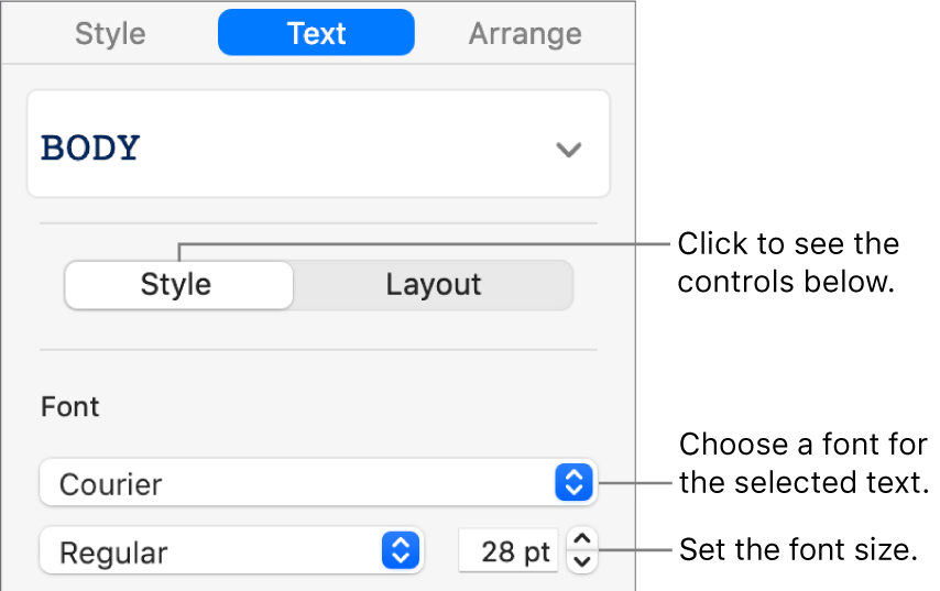 Text controls in the Style section of the sidebar for setting font and font size.