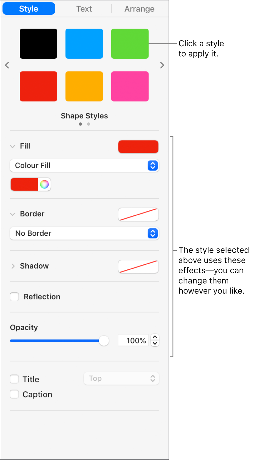 Shape styles and options in the Format section of the sidebar.
