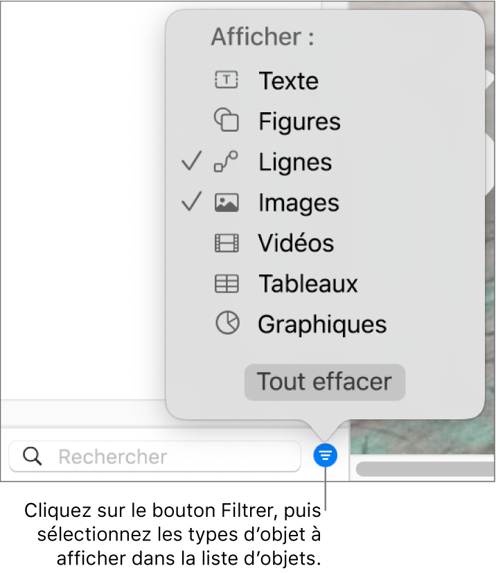 Le menu local Filtrer ouvert, avec les types d'objets qui peuvent être compris dans la liste (texte, figures, lignes, images, films, tableaux et graphiques).
