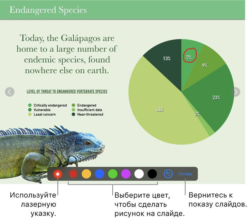 Изображение слайда в слайде с лазерной указкой и элементами выбора цветов.